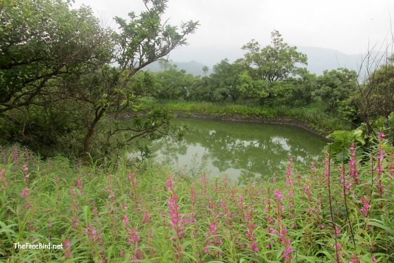 pandavgad lake
