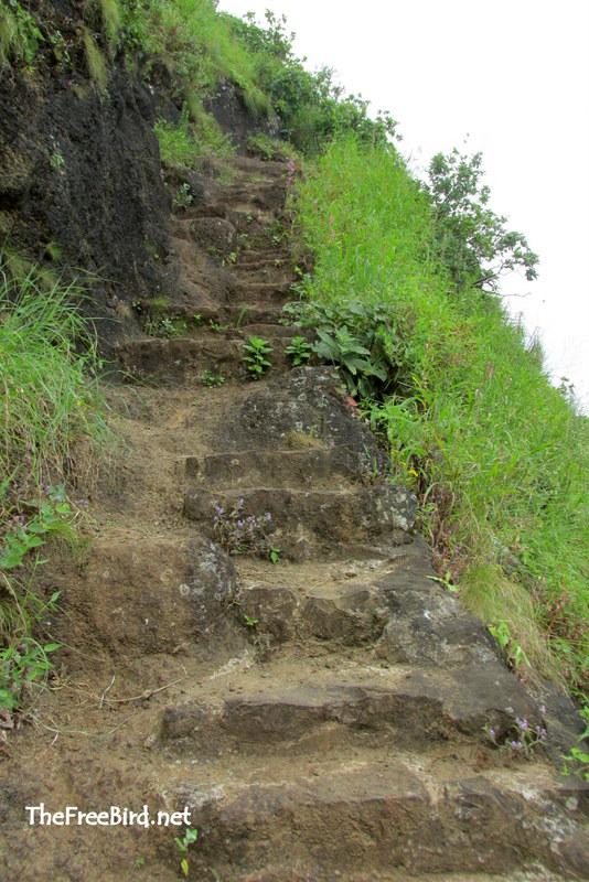 Pandavgad stairs