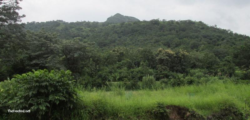 Pandavgad from Gundewadi
