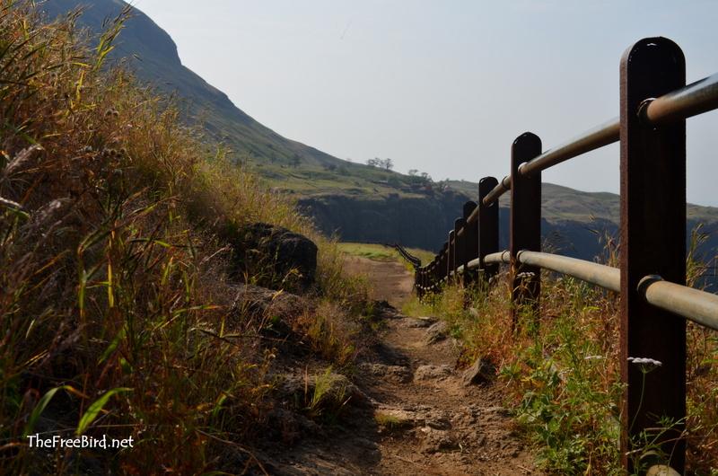 Brahmagiri hill trimbakeshwar
