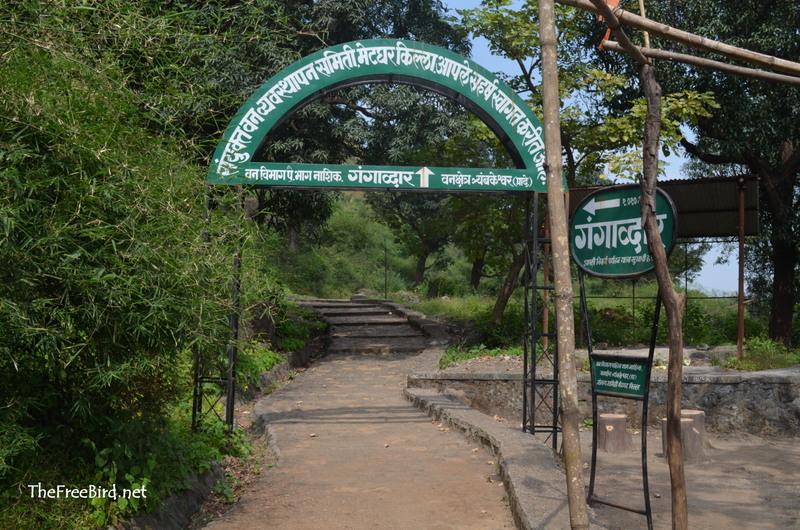 Brahmagiri