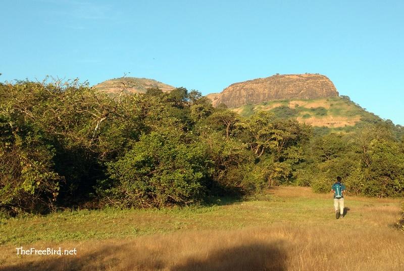 Utwaad hill