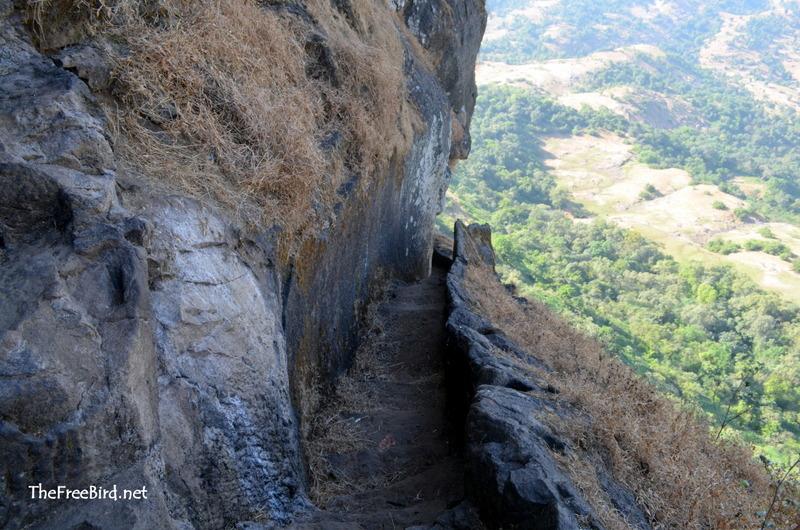 Harihar for t trek