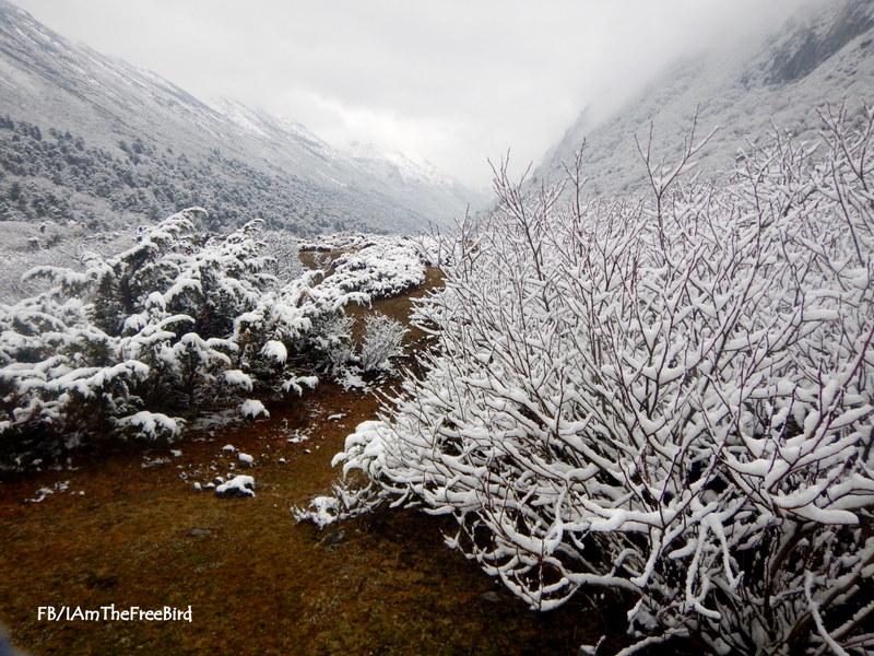 Snowfall Jeethang NIMAS BMC AMC