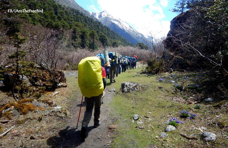 NIMAS BAsic Mountaineering course BMC AMC Meerathang
