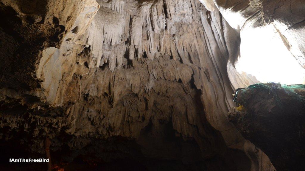 Stalactites at Belum Caves